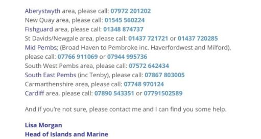 Manx Shearwater Rescue Service! Click on the image for the website this screenshot is taken from (Same page as the image above).