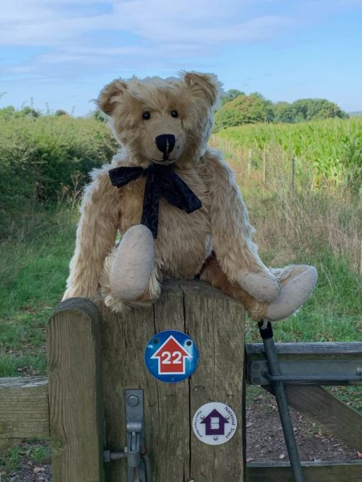 Bertie sat on a gatepost with waymarkers on it.
