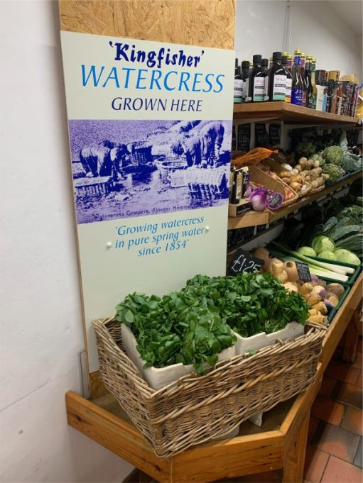 Growing Watercress since 1854. (He has gone mad on Watercress and Tomato sandwiches. Tip. Keep the Watercress in an airtight box in the fridge to keep it fresh for a little while. He also can't resist Ice Creams. Didn't have one for nearly six months, but now it's Strawberry and Clotted Cream each week. Yummy yummy).