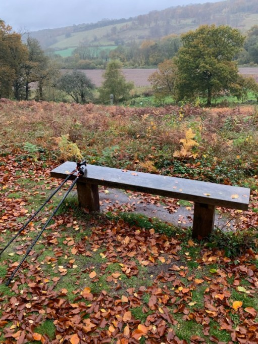 The view across Diddley's Bench.