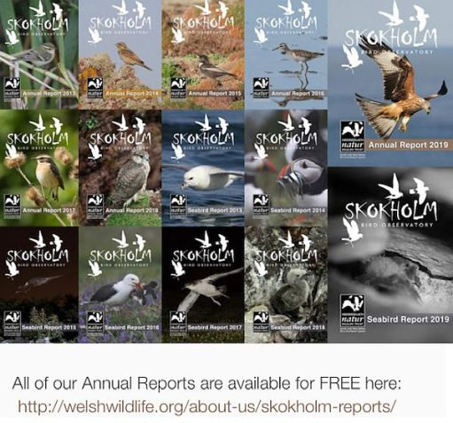 All the annual reports are available on the blog. Click on this image for the link.