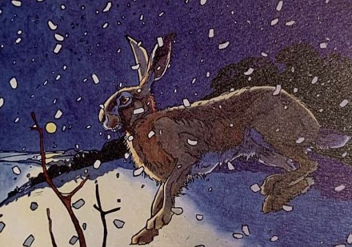 Colour drawing of a hare in the snow.
