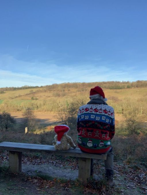 Bertie and Bobby, in Christmas outfits, sat on Diddley's Bench.