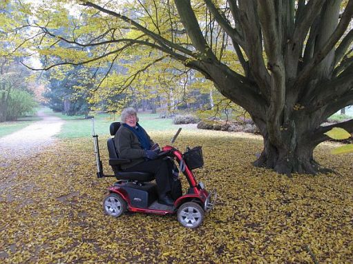 Bobby's sister, Wendy (RIP). In 2012, with failing health, Bobby took her to Wisley a few times and borrowed one of their electric scooters. Here she is under his favourite tree.