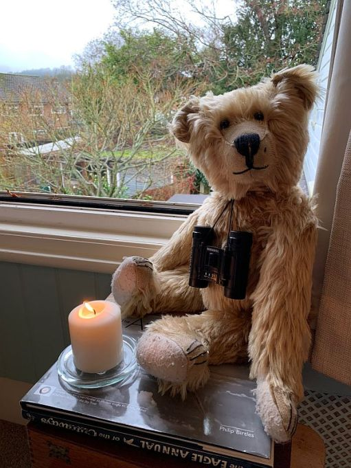 Bertie sat by the window with binoculars around his neck, with a candle lit for Diddley in front of him.