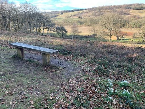 Diddley's Bench and View. Cotswold Snowdrops.