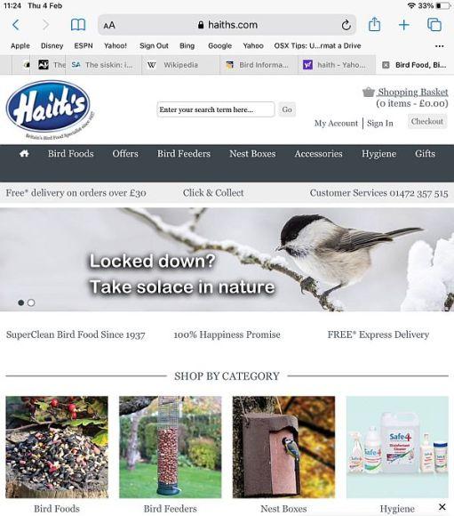Homepage of Haith's website.