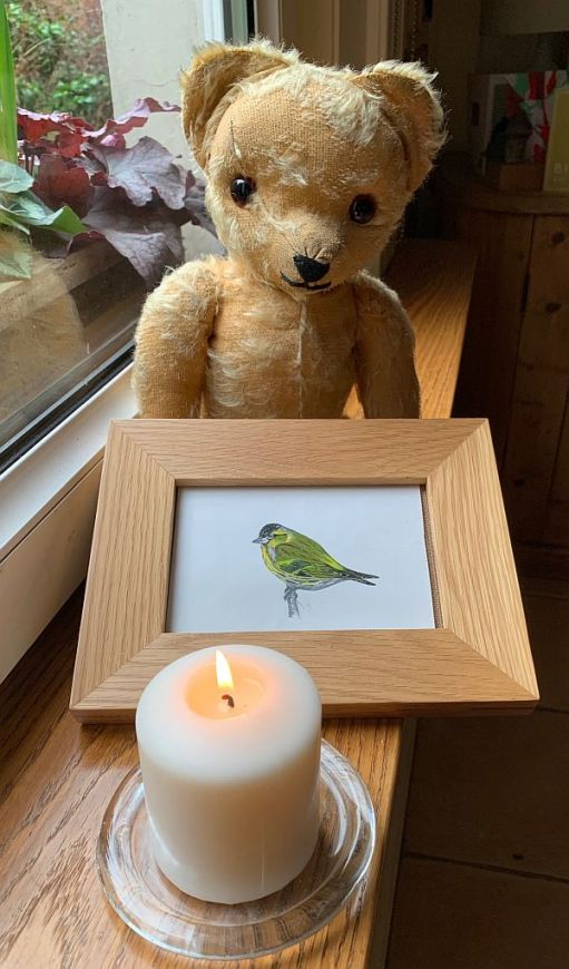 Eamonn sat on the window cill with a painting of a male Siskin and a candle lit for Diddley and the Siskins.