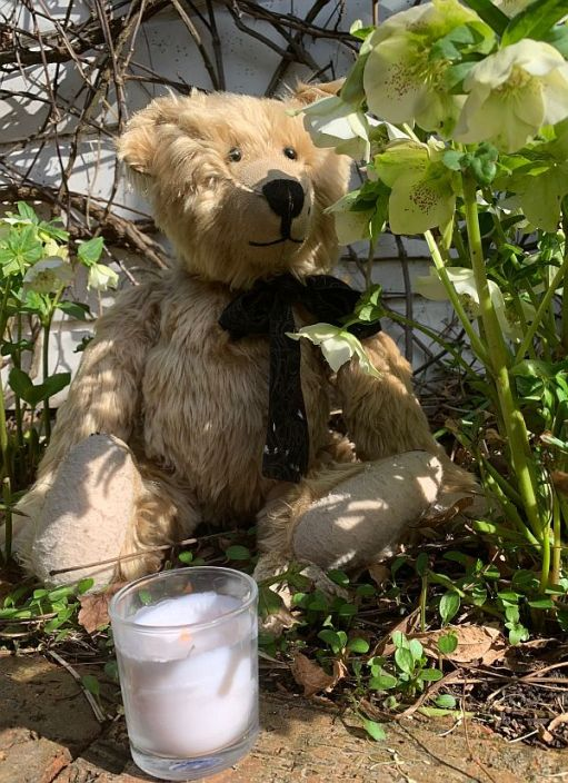 Bertie sat amongst the flowers in the garden, with a candle lit for Diddley in front of him.