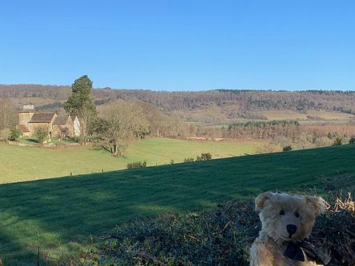 Bertie in the bottom right hand corner, with Wotton Church in the background.