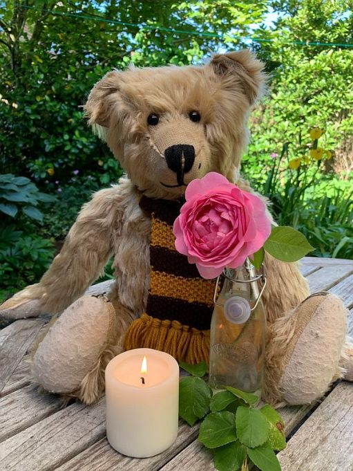 Bertie sat on a wooden picnic table with candle lit for Diddley alongside a Constance Spry Rose in a bottle.