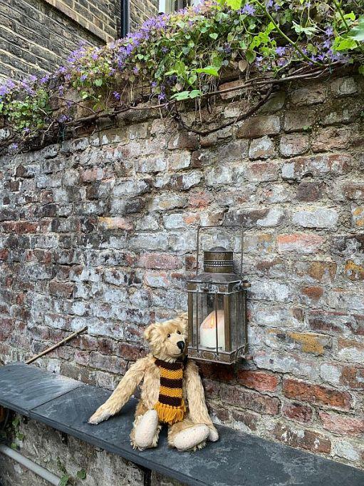 Bertie in the graden of 31 Fournier Street.
