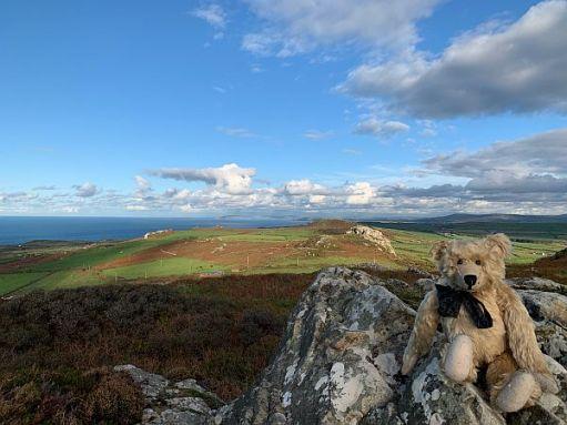 Bertie on top of Garn Fawr.