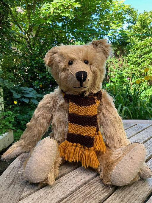 Bertie sat on an outside table wearing his Sutton United scarf.