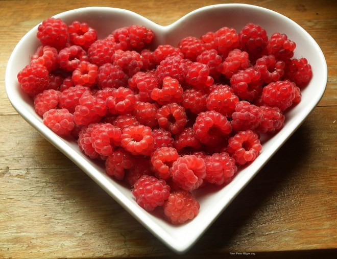 healthy snacks photo