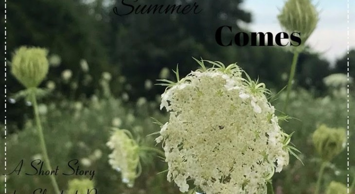 when-summer-comes