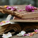flower petals on books