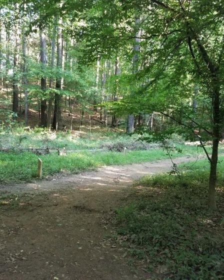 Camí de la via verda Chattahoochee