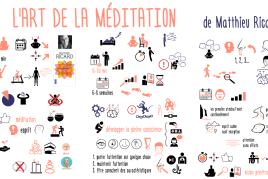 L'art de la méditation de Matthieu Ricard