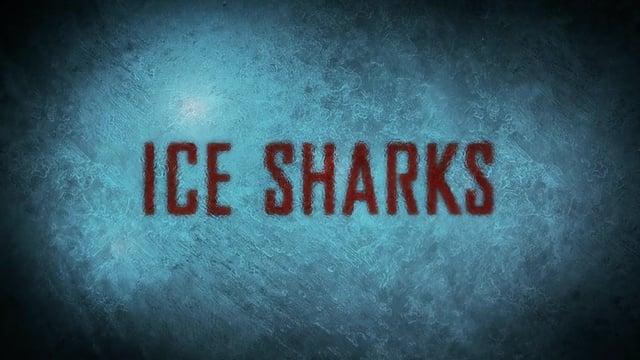 """Im Trailer zu """"Ice Shark"""" kommen die Haie aus dem Eis!"""