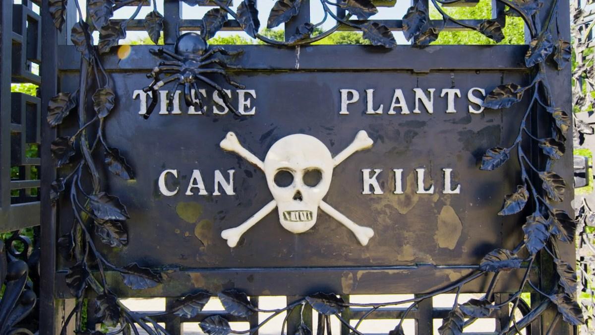Der tödlichste Garten der Welt