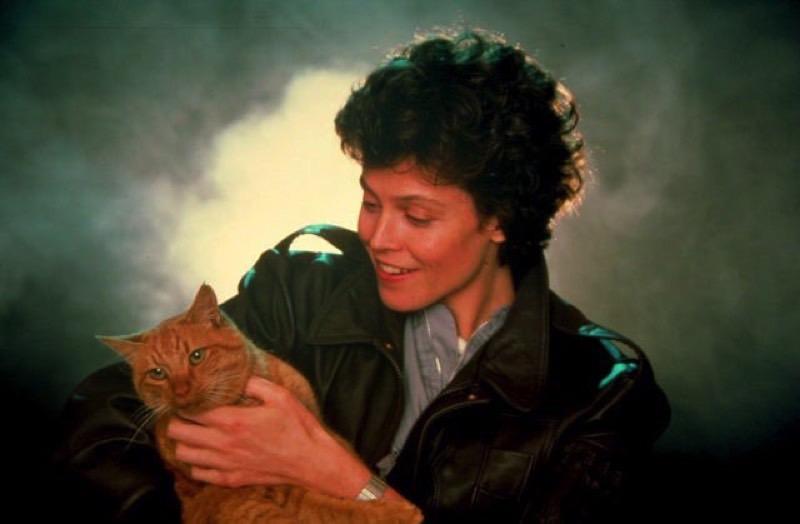 """Die Katze Jones ist natürlich der eigentliche Star in den """"Alien"""" Promo Shots"""