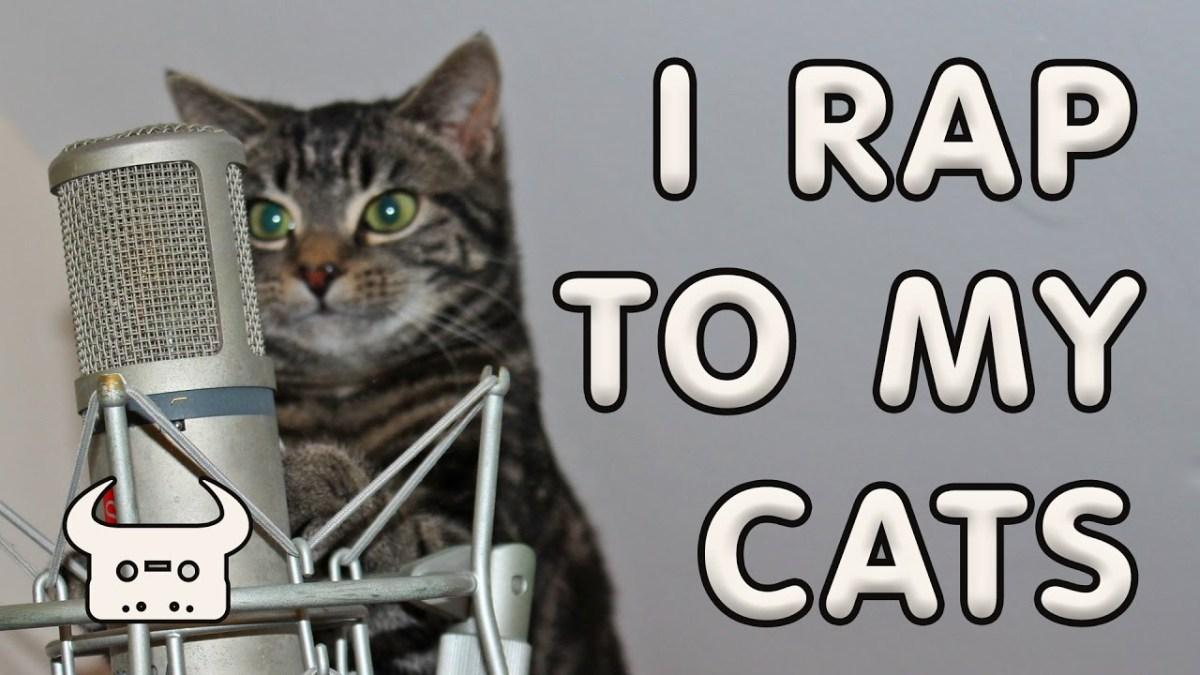 Dan Bull rappt einen Tribute über seine Katzen