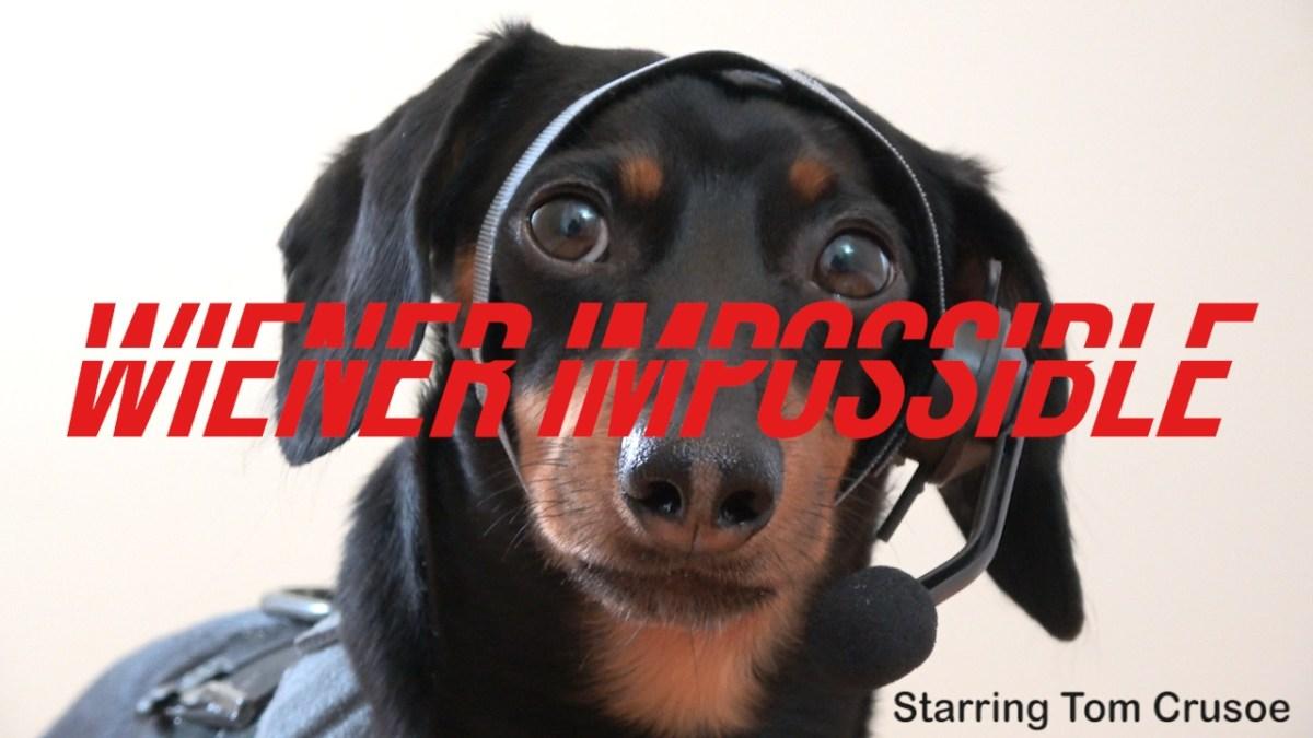 """""""Wiener Impossible"""" zeigt uns, warum Dackel besser als Tom Cruise sind"""