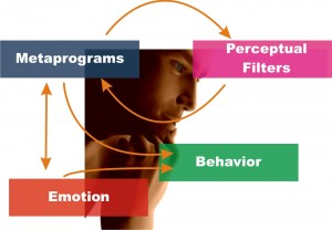 MindSonar Meta Programs and behavior