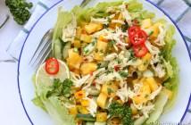 Oosterse kip mango salade