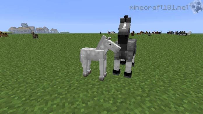 Horses Donkeys And Mules Minecraft 101
