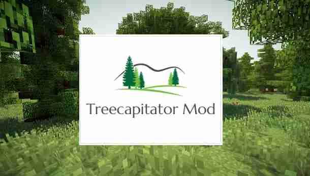 Treecapitator 1.16.5/1.15.2