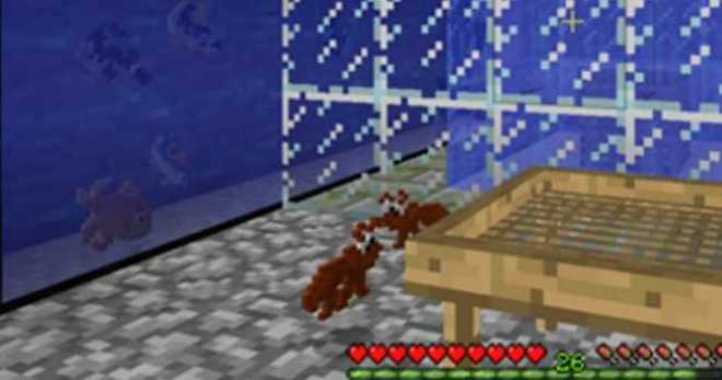 Mariculture Mod for Minecraft 3