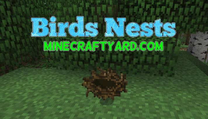 Birds Nests Mod 1.16.5/1.15.2