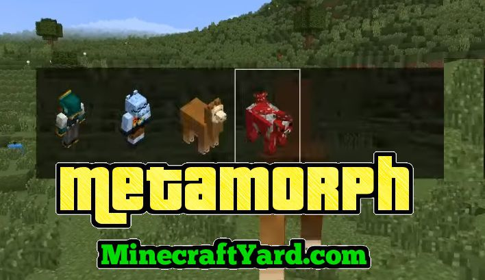 Metamorph Mod 1 16 3 1 16 2 1 15 2 1 14 4 Minecraft