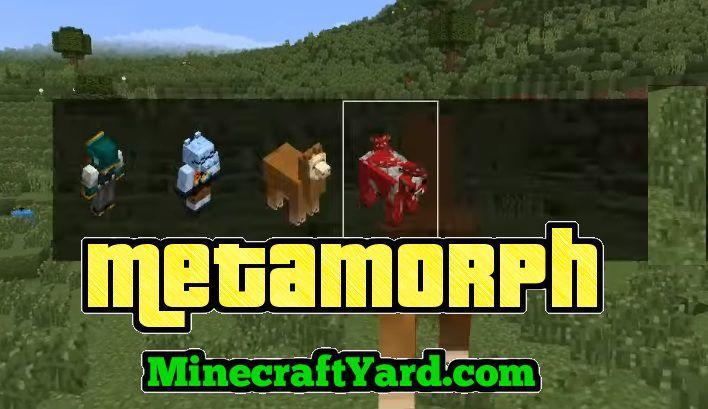 Metamorph Mod 1.16.5/1.15.2