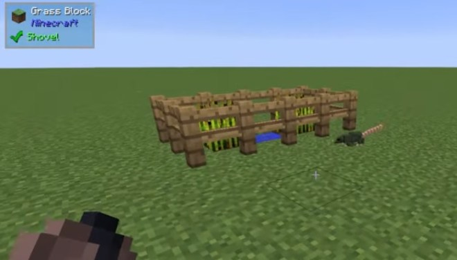 Rats Mod sneaking through wood fence