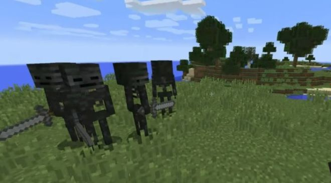 Wither Skeleton Tweaks 1