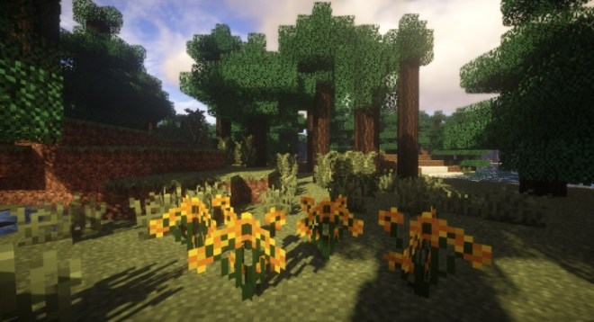 Plants Mod 3