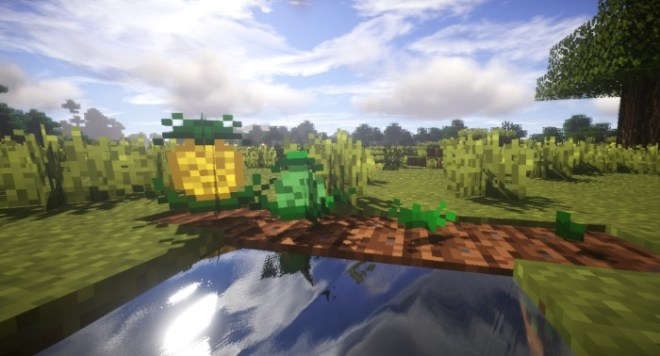 Plants Mod 5