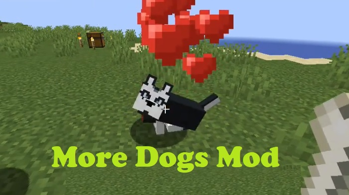 More Dogs 1.16.4/1.15.2