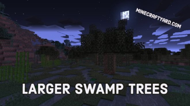 Larger Swamp trees