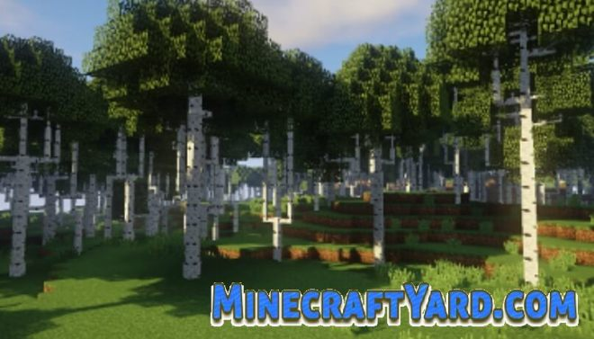 Dynamic Trees Mod 5
