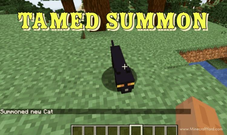 Tamed Summon Mod 1.16.5