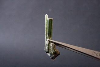 kristal zelenog turmalina
