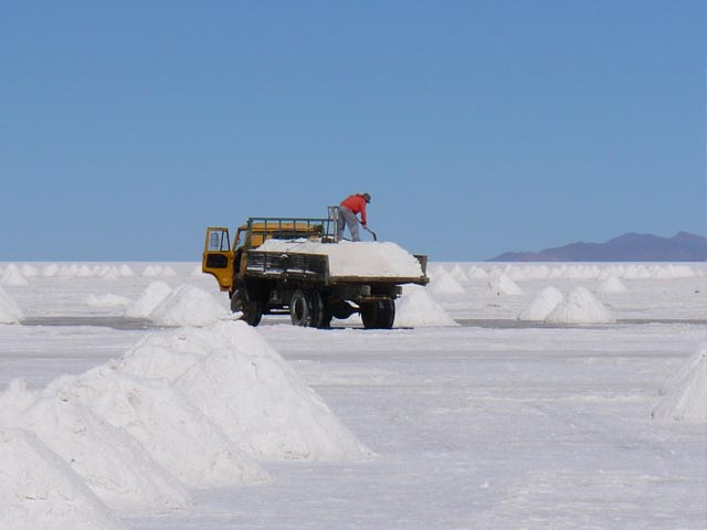 Seis firmas expresaron interés por explotar litio en Chile