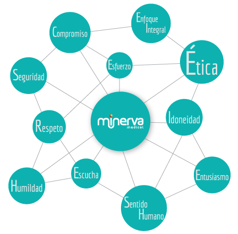Diagrama de Valores Minerva Medical