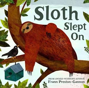 sloth slept