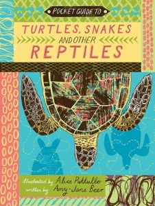 turtles, snakes and other reptiles