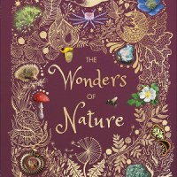 The Wonders of Nature by Ben Hoare, illustrated by Angela Rizza and Daniel Long
